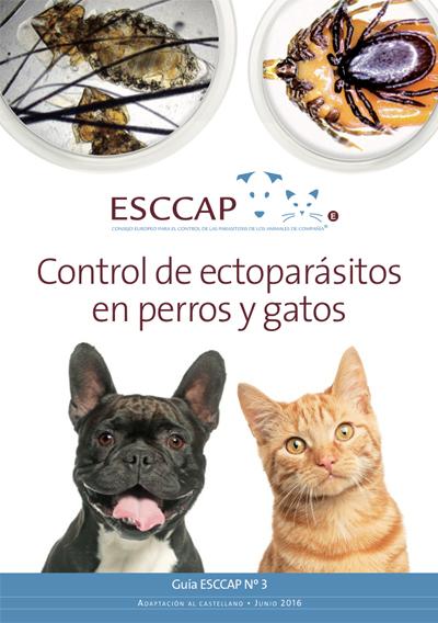 Guía 3 ESCCAP